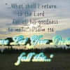 """Come & Let your Protection fall in this...""<br /> <a href=""https://youtu.be/QROtyfkDLrs"">https://youtu.be/QROtyfkDLrs</a><br /> <br /> <a href=""https://creativemusicartsy.wordpress.com/2017/02/14/music-parody-come-let-your-protection-fall-in-this/"">https://creativemusicartsy.wordpress.com/2017/02/14/music-parody-come-let-your-protection-fall-in-this/</a><br /> <br /> <br /> <a href=""https://www.instagram.com/p/BZShx4Zjzuv/?taken-by=creativemusicartsy"">https://www.instagram.com/p/BZShx4Zjzuv/?taken-by=creativemusicartsy</a><br /> <br /> <a href=""https://salphotobiz.smugmug.com/Bicycling/Pomme-De-Terre-Park-Bike/i-G6hH5B5"">https://salphotobiz.smugmug.com/Bicycling/Pomme-De-Terre-Park-Bike/i-G6hH5B5</a>"