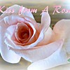 """Kiss from a Rose"" (originally by Seal) by Crazy lil' Sal<br /> <a href=""https://youtu.be/sjAYSp0sKfk"">https://youtu.be/sjAYSp0sKfk</a><br /> <br /> <a href=""https://creativemusicartsy.wordpress.com/2017/07/26/music-karaoke-kiss-from-a-rose-originally-by-seal/"">https://creativemusicartsy.wordpress.com/2017/07/26/music-karaoke-kiss-from-a-rose-originally-by-seal/</a><br /> <br /> <a href=""https://salphotobiz.smugmug.com/Flowers/Various-Flowers/i-Fwzf6vC"">https://salphotobiz.smugmug.com/Flowers/Various-Flowers/i-Fwzf6vC</a>"