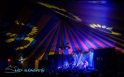 Shrewsbury Folk Festival - Festival Images-18