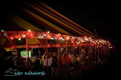 Shrewsbury Folk Festival - Festival Images-17