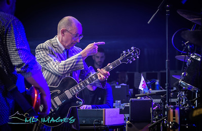 SFF19 - Andy fairweather Low &  The Lowriders-19