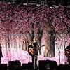 Smashing Pumpkins Civic Opera House (Thur 4 14 16)_April 14, 20160021-Edit-Edit