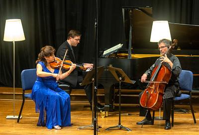 Beethoven Opus 1, No. 3, Trio in c-minor