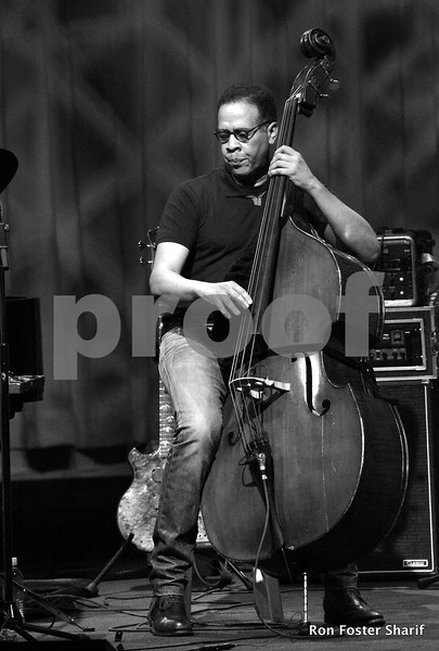 Stanley Clarke Trio in Concert at the Palladium