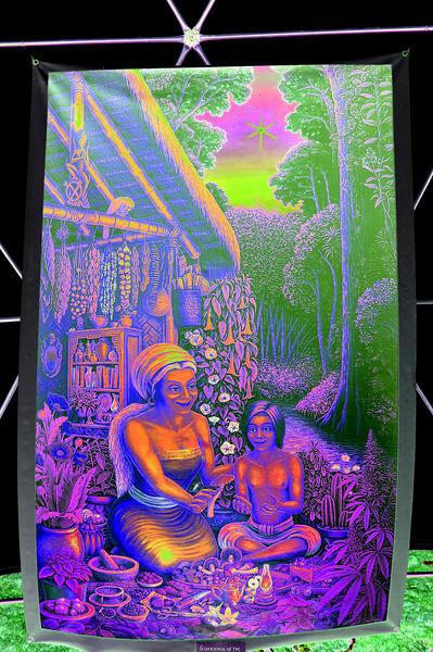 guardians-of-plant-wisdom-solarized613b