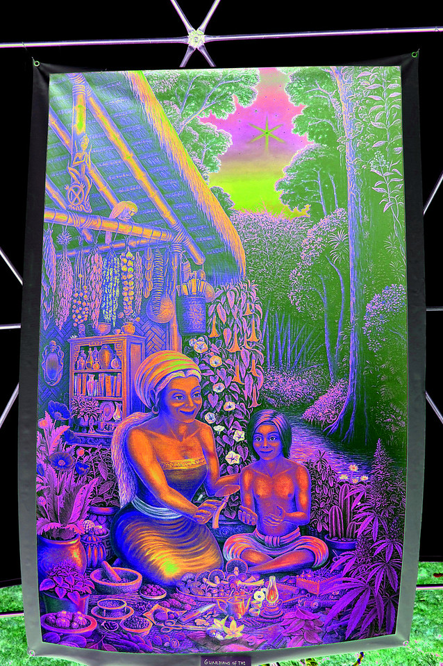 guardians-of-plant-wisdom-solarized613b