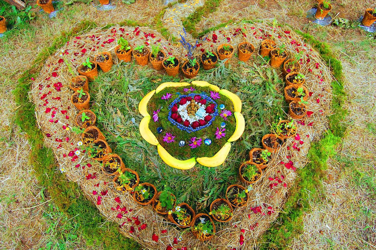 sustainable-heart 026b