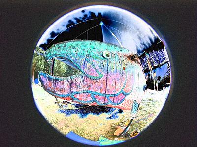 big-fish-solarized05