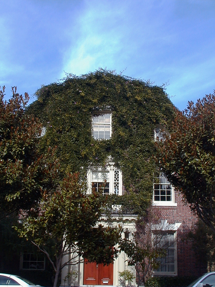 ivy-covered-mansion223