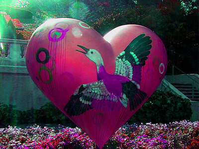goose-heart241b
