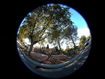 dave-redrock-garden 034