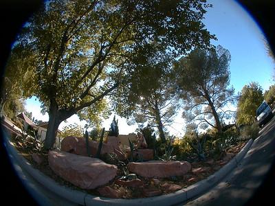 dave-redrock-garden 035