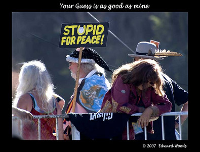 Stupid For Peace