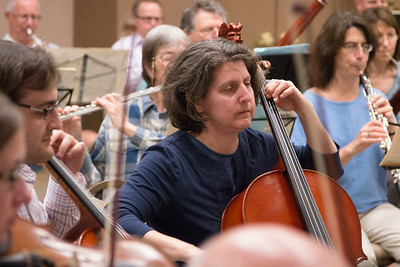 Sheryl Friedlander -- Symphony of the Potomac rehearsal, May 2014