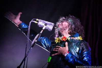 The Flaming Lips / 2014