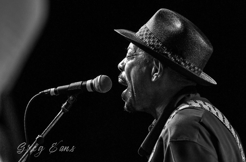 John Primer performs during the Java Blues Jam at the W.C Handy Blues and Barbecue Festival in Henderson.  (Photo by Greg Eans)