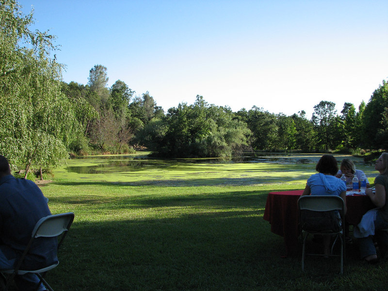 The buffet dinner was held on this beautiful grassy slope off to the side of the main venue.  The food was good, and the view was phenomenal.  The grounds just sloped down towards this pond...just blending in without a sign of a bank or ledge.