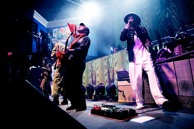 thievery corporation collection