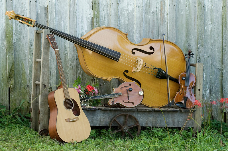 IMG_0010_Instruments and Flowers