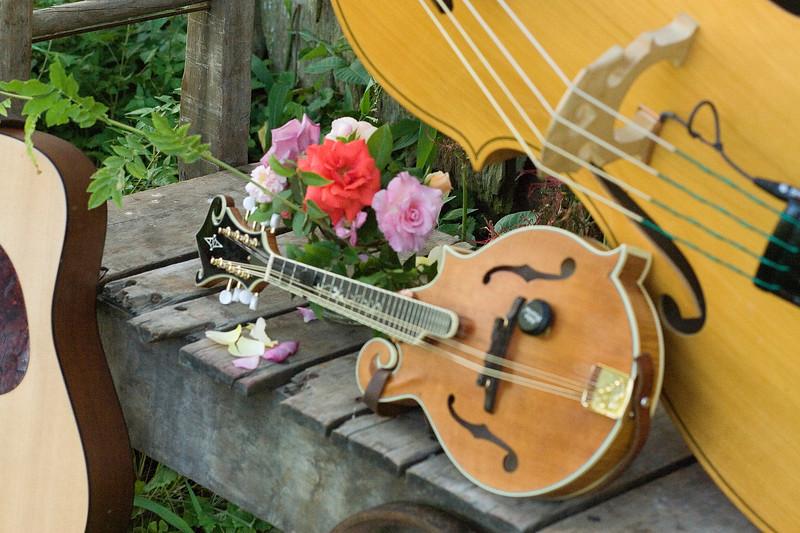 IMG_0005_Mandolin and Flowers