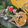 IMG_0005_Mandolin and Flowers