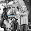 Tom Petty & The Heartbreakers Forest Hills Stadium (Wed 7 26 17)_July 26, 20170076-Edit