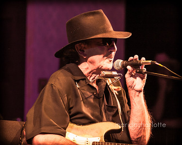 Tony Joe White-8