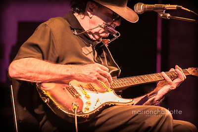 Tony Joe White-5