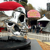 Disco pirate skull & Silent Disco