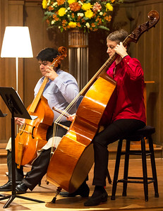 Low notes of the Viols of Houston