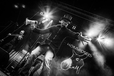 Honigdieb, Turock Open Air 2016