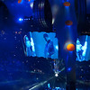 U2-2011-5618