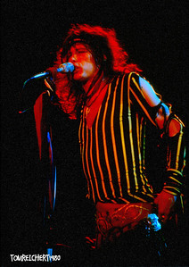 AEROSMITH - NASSAU COLISEUM , NEW YORK 1980  TYLER