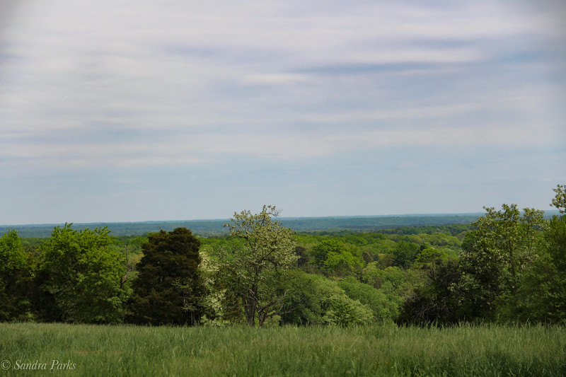 The View from Ashlawn Highlands