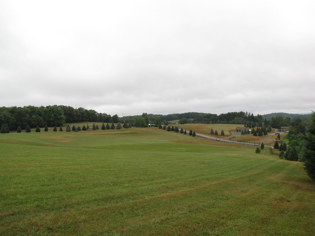 Woodstock hill, looking down to the stage.