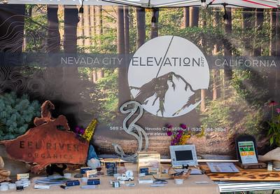 WorldFest 2019_ Elevation Nevada City-8840