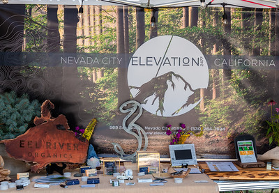 WorldFest 2019_ Elevation Nevada City-8840