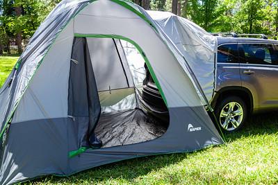 WorldFest 2019 Napier Tent-7843