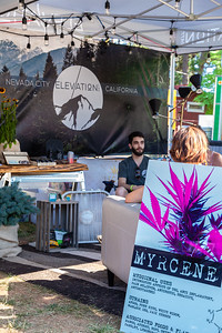WorldFest 2019_ Elevation Nevada City-8845