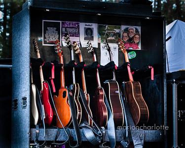 Boz Guitars-CA Worldfest 2016-1
