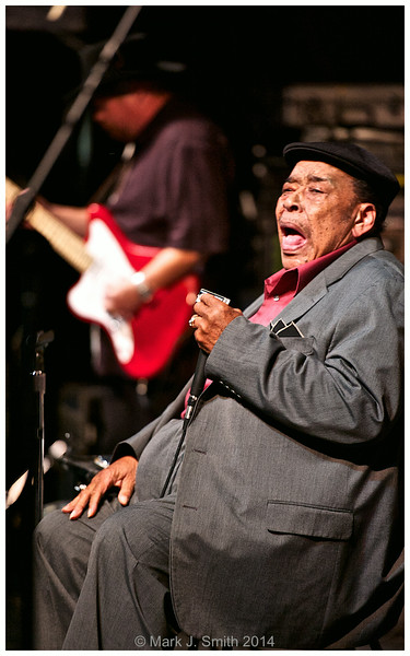 James Cotton  James Cotton