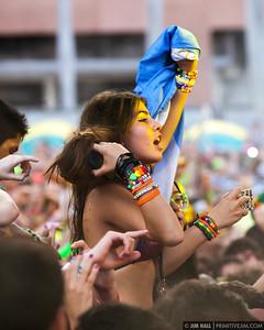 Ultra Music Fest 2013