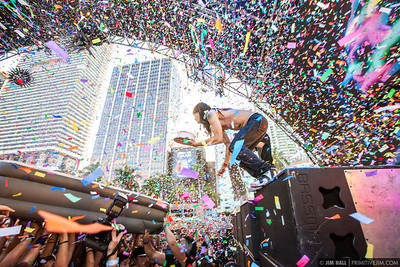 Special , Steve Aoki Ultra Music Fest 2013