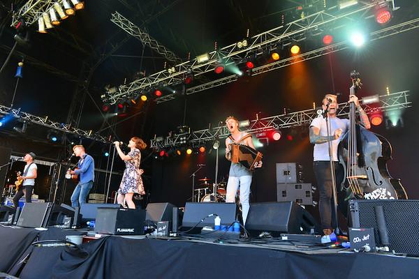 Skinny Lister, 2014 Wickerman Festival