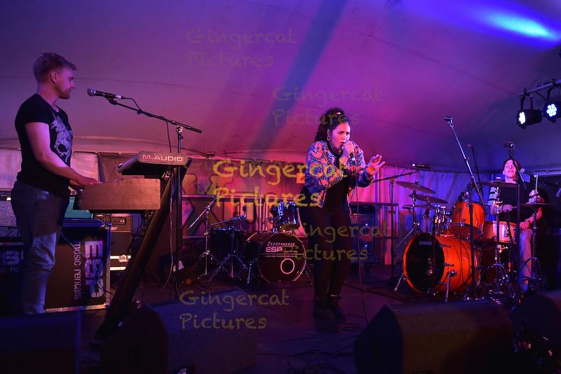 Wickerman Festival 2015; Bossy Love; Solus Tent