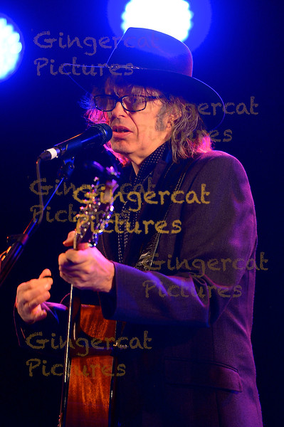 The Waterboys, Summerisle Main Stage, 2015 Wickerman Festival, Dumfries And Galloway, Dundrennan