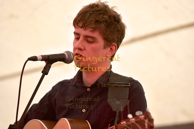 Tommy Reilly, Solus Tent, 2015 Wickerman Festival, Dumfries And Galloway, Dundrennan
