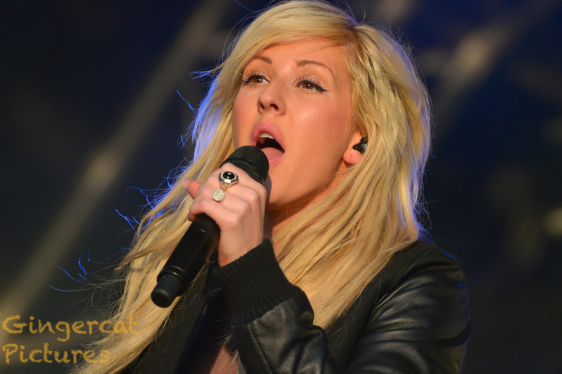 Ellie Goulding, 2013 Evolution