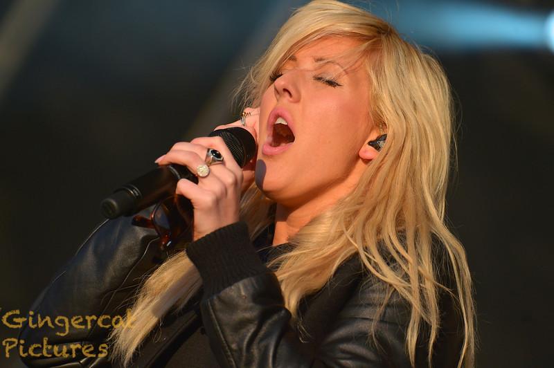 Ellie Goulding, 2013 Evolution