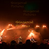The Dammed, 2015 Loopallu Festival, (c)Brian Anderson, gingercatpictures.com